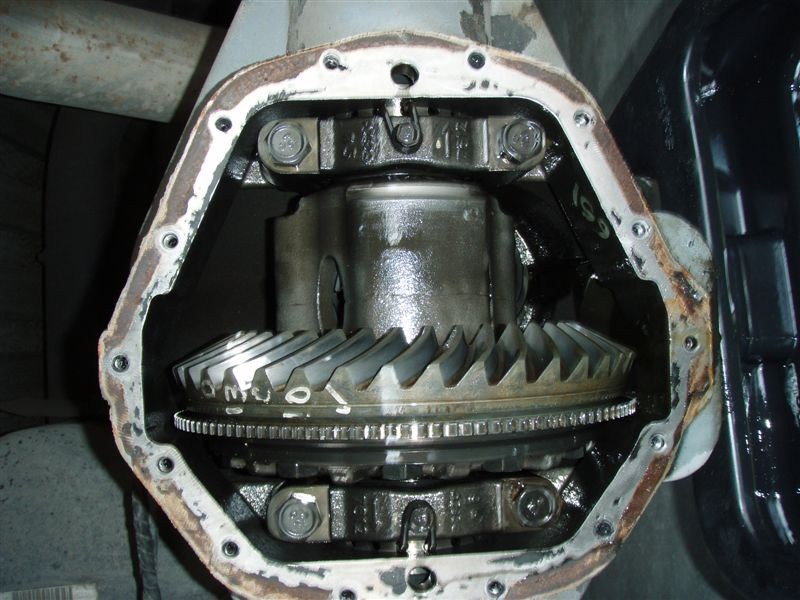 AAM Rear Axle-rear_end__6_.jpg